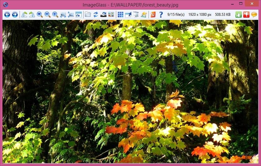 ImageGlass 1.4.26.7